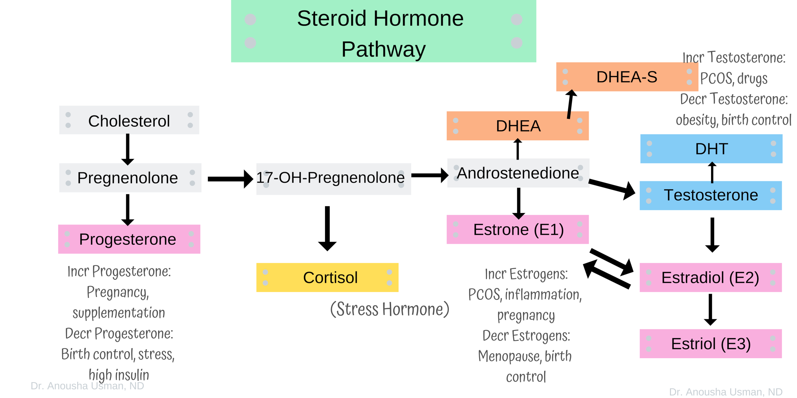 Discovery Of Mechanism By Which Sex Hormone Regulates Aggressive Behavior